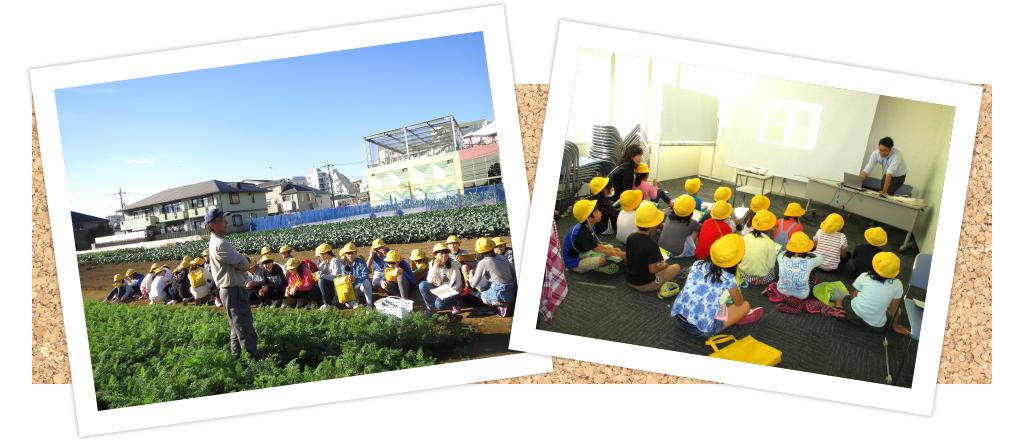 学校での農業学習 メイン画像